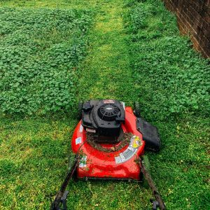 Dont-forget-to-mow-your-lawn-this-spring-cleaning-season