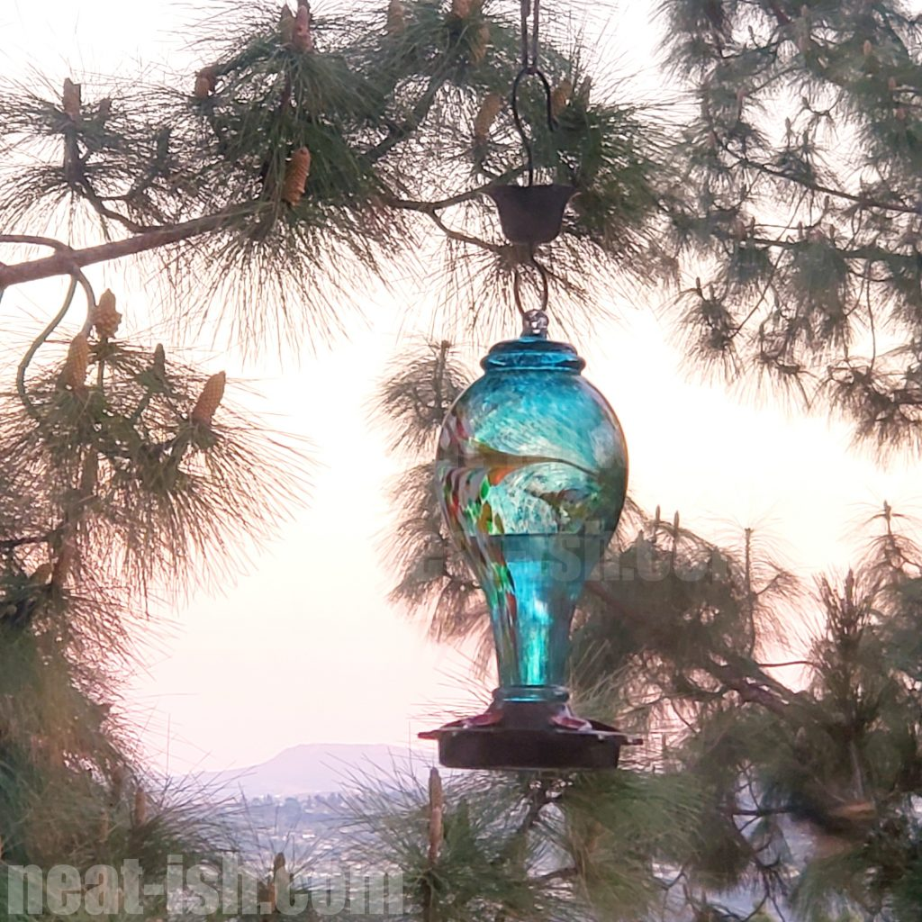 spring-clean-your-humming-bird-feeders